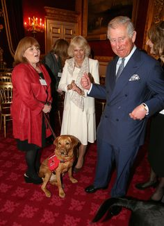 zimbio: The Prince Of Wales & Duchess Of Cornwall Watch A Demonstration By Medical Detection Dogs 3/11/2014