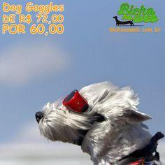 Óculos para Pets em promocão de R$ 72,00 por R$ 60,00 em até 3x sem juros. Proteja seu Pet contra sujeiras e raios UV.    Acesse Bichonaweb.com.br e conheça.