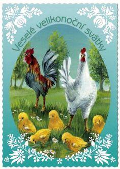 Old Postcards, Animals, Animais, Animales, Animaux, Animal, Dieren