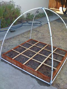 Square Foot Garden : Squared and Planted