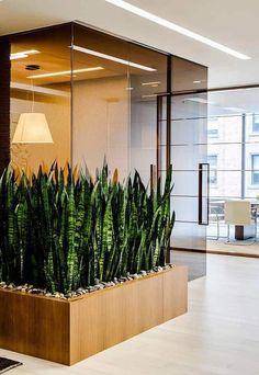 Small Office Design, Office Interior Design, Office Interiors, Interior Design Living Room, Interior Garden, Interior Plants, House Plants Decor, Plant Decor, Partition Design