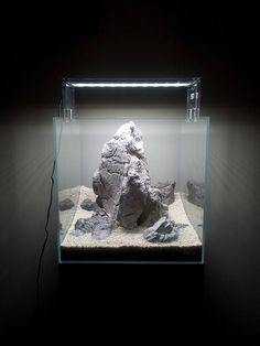 Layout: Hardscape by Spyros Spizz Stasi Big rocks on small spaces or how to create contrast :) I love this new style that can be seen growing and growing! Aquarium Rocks, Nano Aquarium, Nature Aquarium, Aquarium Ideas, Turtle Tank Setup, Aquascaping, Red Cherry Shrimp, Cool Fish Tanks, Ground Cover Plants