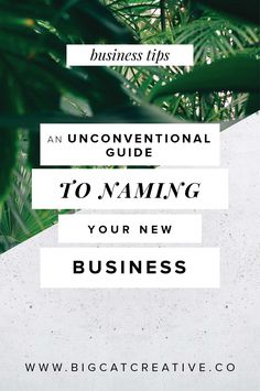 An Unconventional Guide to Naming Your New Business — Big Cat Creative | Branding and Website Design for Creative Entrepreneurs