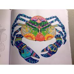 Millie Marotta's Tropical World - Crab