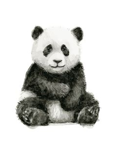 panda, baby panda, watercolor, animals, nursery art print, baby animal decor, cute baby panda watercolor<br/> <br/> www.OlechkaDesign.com