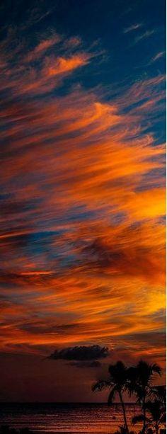 Jesucristo es el Hijo de Jehová y su amigo más íntimo y querido. Antes de vivir como hombre en la Tierra, Jesús vivió en el cielo como poderoso ser espiritual (Juan 17:5). Luego vino a la Tierra para enseñar a las personas la verdad acerca de Dios (Juan 18:37). Además, dio su vida humana para salvar del pecado y la muerte a los seres humanos obedientes (Romanos 6:23). Jesús es ahora el Rey del Reino de Dios, un gobierno celestial que hará de la Tierra un paraíso (Revelación 19:16).