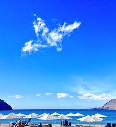 beach Clouds, Beach, Outdoor, Outdoors, The Beach, Beaches, Outdoor Living, Garden, Cloud