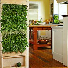 Indoor Herb Wall via home-designing #Herbs #Vertical_Garden #Living_Wall