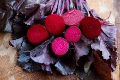 BULLS BLOOD BEET (50 DAYS)  (HEIRLOOM) - Pinetree Garden Seeds - Vegetables,Herbs  - 1