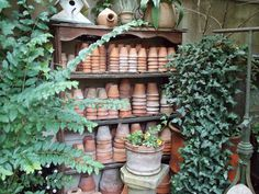 .Neat and orderly collection of terra-cotta pots - so easy to find what you need