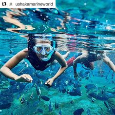 20 Likes, 0 Comments - Dirty Boots Adv Adventure Activities, Adventure Tours, Life Under The Sea, Shark Diving, Snorkelling, Beautiful Beaches, South Africa, How To Apply, Instagram Repost