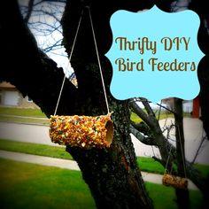 DIY Bird Feeder in Tree
