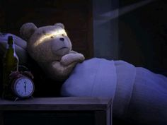 who loves ted. Cute Love, Best Quotes, Funny Memes, Teddy Bear, Sleep, Humor, Animals, Funny Stuff, Thoughts