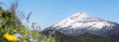 Blick auf den Ötscher, © weinfranz.at Park, Mountains, Nature, Travel, Landscape Maintenance, Hiking Trails, Landscape Pictures, Recovery, Vacations