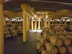 YES, Dinastía Vivanco's passion for wine shows