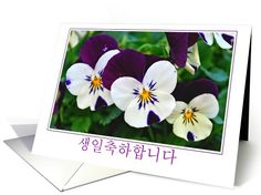 Korean purple and white pansy birthday card. Personalize any greeting card for no additional cost! Cards are shipped the Next Business Day. Korean Birthday, Cute Korean, Pansies, All Things, Birthday Cards, Greeting Cards, Purple, Bday Cards, Birthday Greetings