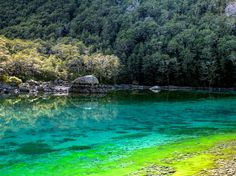 Blue Lake, in Nelson Lakes National Park, has the clearest water in the world.