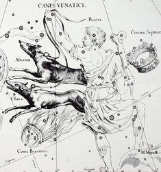 Joannes Hevelius      Uranographia, Danzica 1690