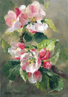 Anne Cotterill (1933-2010) –– Apple Blossom  (593x850)