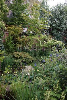Chelsea Flower Show 2013 The M Centenary Garden- Window through Time   Flickr - Photo Sharing!