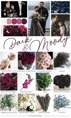 Packages in 3 different sizes to take the guesswork out of your DIY flower selection and quantity! Flower Moxie has moodboard packages for every vibe and color! Diy Wedding Flowers, Cute Wedding Ideas, Wedding Themes, Floral Wedding, Fall Wedding, Wedding Bouquets, Our Wedding, Dream Wedding, Diy Flower