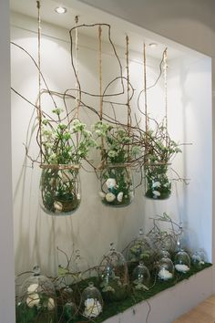interesting:  simple white flowers under bell jars...