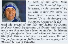 Mother Teresa quote about the eucharist Mother Theresa Quotes, Mother Teresa, Saint Teresa Of Calcutta, How He Loves Us, Eucharist, Pray For Us, First Communion, Our Life, Love Him