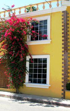 The Colors of San Jose del Cabo Grey Interior Design, Modern Design, Spiritual Warfare Prayers, San Jose Del Cabo, Mexico Travel, Outdoor Decor, Eye Candy, Vacation, Gray