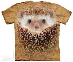 3670 Big Face Hedgehog