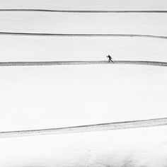 solitary . . Photo by Matej Rumanský -- National Geographic Your Shot
