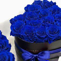 Instagram-Foto von Amour Des Roses® Rosenbox • 1. Juli 2020 um 19:00 Catty Noir, Rose Pictures, Flower Basket, Birthday Wishes, Infinity, Bloom, Arabic Quotes, Flowers, Bucket