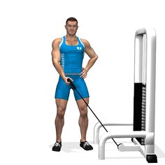 ONE ARM CABLE SIDE LATERALS RAISE INVOLVED MUSCLES DURING THE TRAINING SHOULDERS