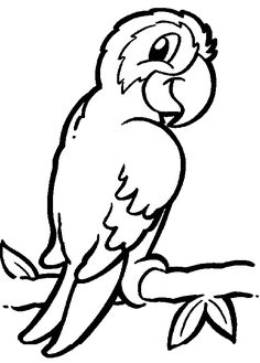parrot coloring page also links to other animal coloring pages good for younger boys and girls