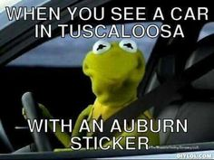 I see them ALL the time here, and I just don't get it [other than they want to live here in Tuscaloosa to see how Champions do things]. There isn't enough money in the world to make me live in Auburn! Roll Tide Football, Crimson Tide Football, Alabama Football, Alabama Crimson Tide, College Football, Football Stuff, Bama Fever, University Of Alabama, Down South
