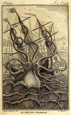 Giant octopus print to download Kraken Sea Monster, Octopus Species, Octopus Drawing, Octopus Painting, Octopus Illustration, Octopus Print, Picture Boxes, Nautical Art, Vintage Nautical