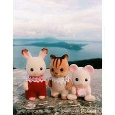 Instagram user @bckawaii sent in this #SylvanianSummer entry which shows that the smallest Sylvanians have the greatest taste for adventure! #SylvanianFamilies