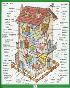 ISSUU - 1351 Parole Inglesi Per Piccoli e Grandi - Dizionario Illustrato de Monaom Attouchi