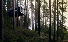 Contemporary Tree Hotel.. Than we will build a tree-house like this for jojo!