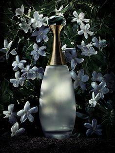 Jadore Dior Luxury Fragrance - http://amzn.to/2iFOls8