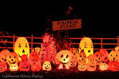 LOVE the glow of pumpkin blowmolds.  Repinned from Lighthearted Holiday Displays. Outside Halloween Decorations, Halloween Outside, Halloween Blow Molds, Halloween Displays, Halloween Trick Or Treat, Outdoor Halloween, Holidays Halloween, Vintage Halloween, Halloween Pumpkins