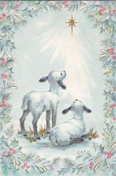 Vintage Lambs Looking at Holy Star Christmas Greeting Card