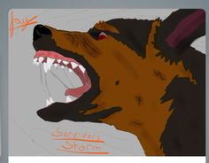 Storm from survivors by Erin's hunter  Picture drawn         By: Jay