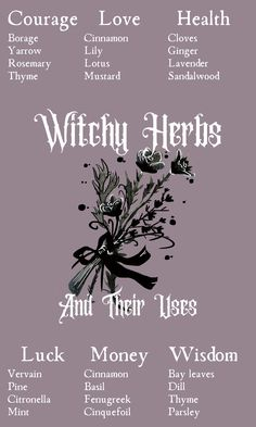 Witchcraft Herbs, Witchcraft Books, Green Witchcraft, Magick Spells, Witchcraft History, Wiccan Spell Book, Wiccan Witch, Magic Herbs, Herbal Magic