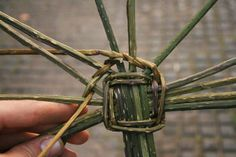 Weaving a basic basket using bramble steams Handmade Rugs, Handmade Crafts, Paper Basket Weaving, Making Baskets, Recycled Magazines, Pine Needle Baskets, Handmade Headbands, General Crafts, Handmade Journals