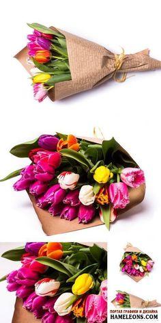 Букеты из разноцветных тюльпанов на белом фоне в растре | Bouquet of Tulips