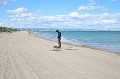 BODAS EVELOPEMENT EN VALENCIA: LAS BODAS MÁS ÍNTIMAS EN LA PLAYA Y OTROS RINCONES.   Las Tres Sillas Valencia, Beach, Water, Outdoor, Chairs, Weddings, Gripe Water, Outdoors, The Beach