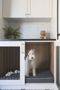 Dog Room Decor, Diy Dog Crate, Dog Crate Beds, Dog Crate Table, Dog Spaces, Small Spaces, House Ideas, Dog Area, Animal Room