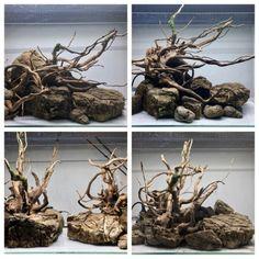 4 different layouts, same rocks and woods Betta Aquarium, Biotope Aquarium, Aquarium Rocks, Tropical Fish Aquarium, Planted Aquarium, Betta Fish, Terrariums, Garden Terrarium, Aquascaping