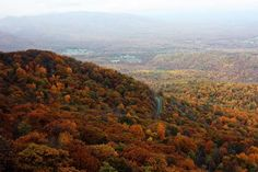 scenes of Charlottesville from the Blue Ridge Parkway
