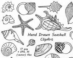 Hand getrokken Seashell Clipart, Shell illustraties, digitale postzegels met zomer-strand, PNG, EPS, AI, Vector clipart, voor persoonlijk en commercieel gebruik